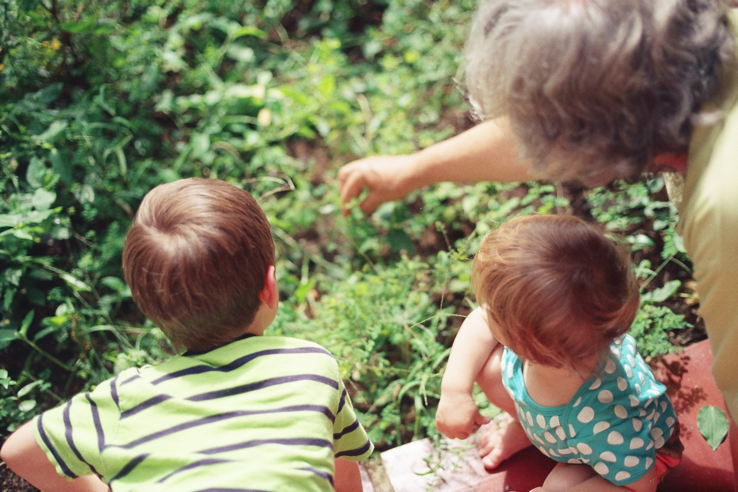 How To Protect Your Parents From Undue Influence